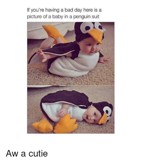 Girl Memes: If you're having a bad day here is a  picture of a baby in a penguin suit Aw a cutie