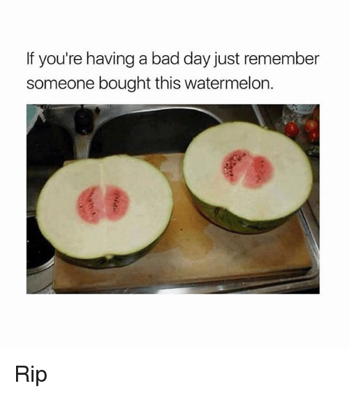 Bad, Bad Day, and Memes: If you're having a bad day just remember  someone bought this watermelon. Rip
