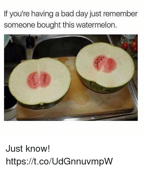 Watermelone: If you're having a bad day just remember  someone bought this watermelon.  63 Just know! https://t.co/UdGnnuvmpW