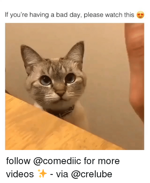if youre having a bad day: If you're having a bad day, please watch this follow @comediic for more videos ✨ - via @crelube