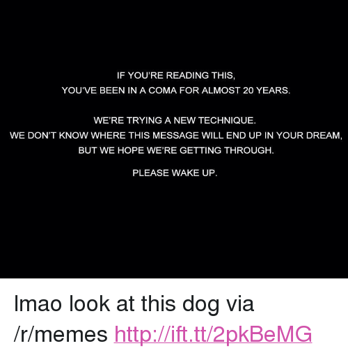 """Look At This Dog: IF YOU'RE READING THIS,  YOU'VE BEEN IN A COMA FOR ALMOST 20 YEARS  WE'RE TRYING A NEW TECHNIQUE.  WE DON'T KNOW WHERE THIS MESSAGE WILL END UP IN YOUR DREAM,  BUT WE HOPE WE'RE GETTING THROUGH  PLEASE WAKE UP <p>lmao look at this dog via /r/memes <a href=""""http://ift.tt/2pkBeMG"""">http://ift.tt/2pkBeMG</a></p>"""