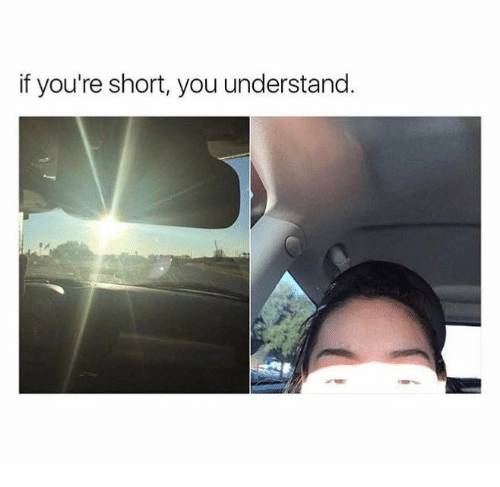 Dank, 🤖, and You: if you're short, you understand.