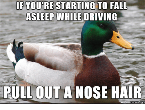 Pulling Hair Out Meme: IF YOURE STARTING TO FALL  ASLEEP WHILE  DRIVING  PULLOUT A NOSE HAIR