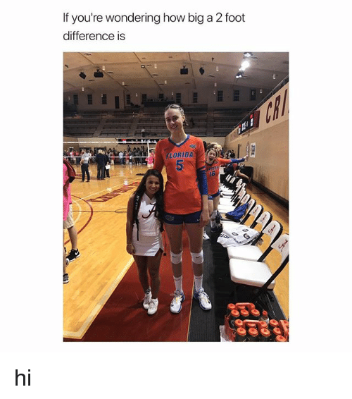 Florida, Girl Memes, and How: If you're wondering how big a 2 foot  difference is  FLORIDA hi