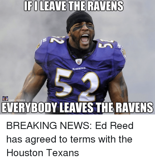Ed Reed: IFI LEAVE THE RAVENS  NFL MEMES  EVERYBODY LEAVES THE RAVENS BREAKING NEWS: Ed Reed has agreed to terms with the Houston Texans