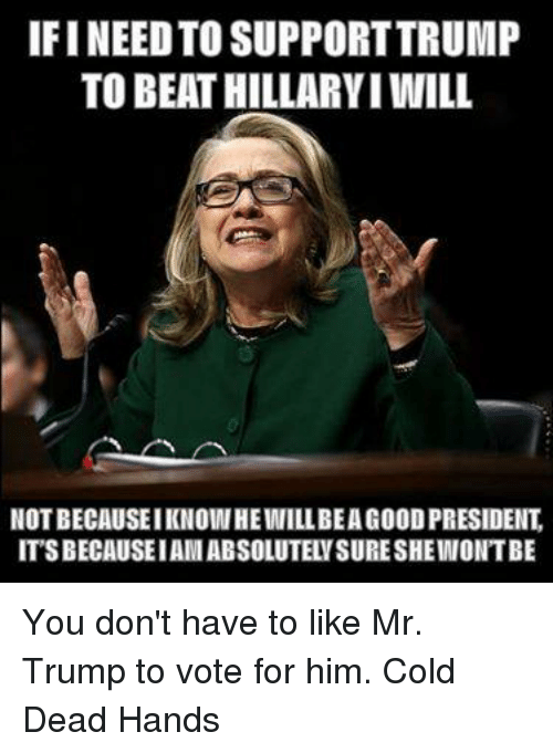 Trump: IFINEED TO SUPPORT TRUMP  TO BEAT HILLARVIWILL  NOTBECAUSEIKNOWHEIMIILLBEAG00DPRESIDENT  ITSBECAUSEIAMABSOLUTELYSURESHEINONTBE You don't have to like Mr. Trump to vote for him. Cold Dead Hands