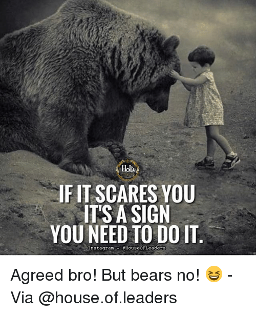 Instagram, Memes, and Bears: IFIT SCARES YOU  ITS A SIGN  YOU NEED TO DO IT  Instagram d HouseOF Leaders Agreed bro! But bears no! 😆 - Via @house.of.leaders