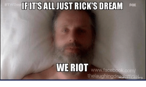 Facebook, Memes, and Riot: IFITS  FITS ALL JUST RICK'S DREAM Fox  WE RIOT www.fa  www.facebook.com/  thelaughingdemskoumionebrs  akeameme org