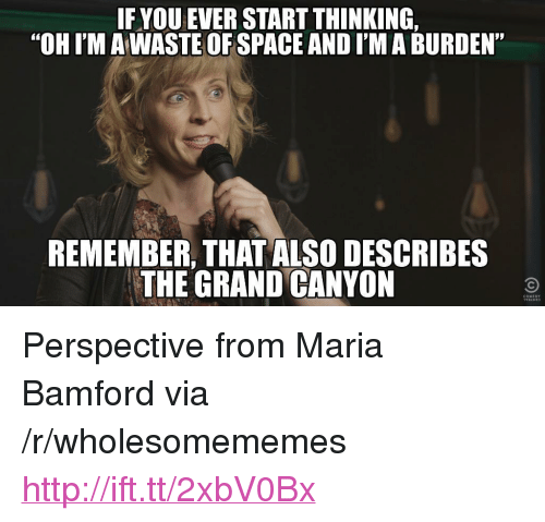 "the grand canyon: IFYOU EVER START THINKING  ""OH I'M A WASTE OFSPACE AND I'M A BURDEN""  95  REMEMBER, THAT ALSO DESCRIBES  THE GRAND CANYON <p>Perspective from Maria Bamford via /r/wholesomememes <a href=""http://ift.tt/2xbV0Bx"">http://ift.tt/2xbV0Bx</a></p>"