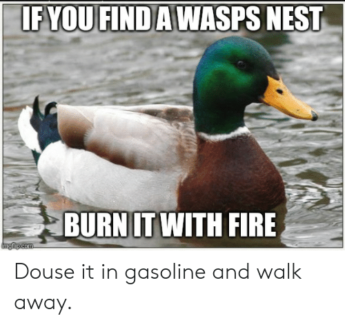 douse: IFYOU FIND AWASPS NEST  BURN IT WITH FIRE  imgilp.com Douse it in gasoline and walk away.