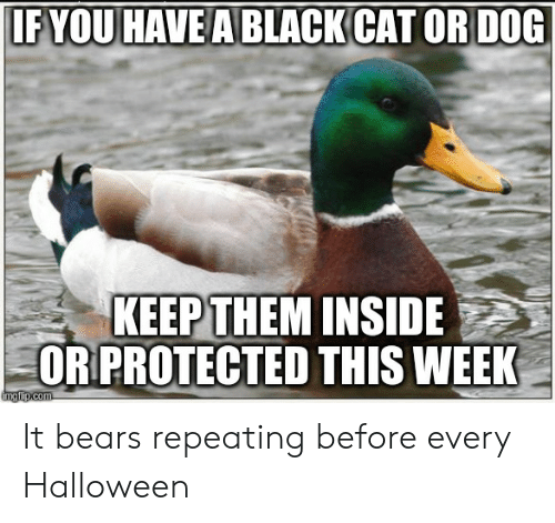 cat-or-dog: IFYOU HAVE A BLACK CAT OR DOG  KEEPTHEM INSIDE  ORPROTECTED THIS WEEK  ingfip.com It bears repeating before every Halloween