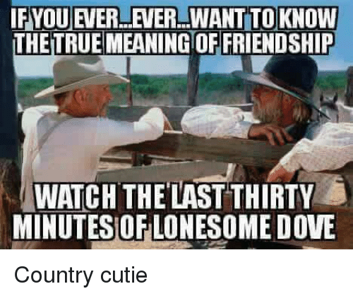 memes: IFYOUEVERLEVER WANT TO KNOW  THETRUEMEANINGTOFFRIENDSHIP  WATCH THE LAST THIRTY  MINUTES OF LONESOME DOVE Country cutie