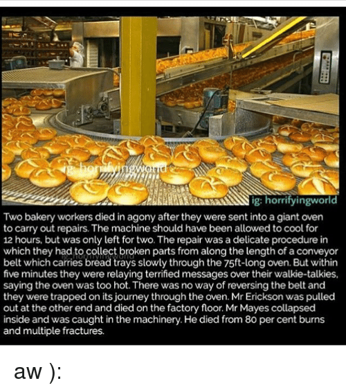 Journey, Memes, and Cool: ig:  g: horrityingworld  Two bakery workers died in agony after they were sent into a giant oven  to carry out repairs. The machine should have been allowed to cool for  12 hours, but was only left for two. The repair was a delicate procedure in  which they had to collect broken parts from along the length of a conveyor  belt which carries bread trays slowly through the 75ft-long oven. But within  five minutes they were relaying terrified messages over their walkie-talkies,  saying the oven was too hot. There was no way of reversing the belt and  they were trapped on its journey through the oven. Mr Erickson was pulled  out at the other end and died on the factory floor. Mr Mayes collapsed  inside and was caught in the machinery. He died from 80 per cent burns  and multiple fractures. aw ):