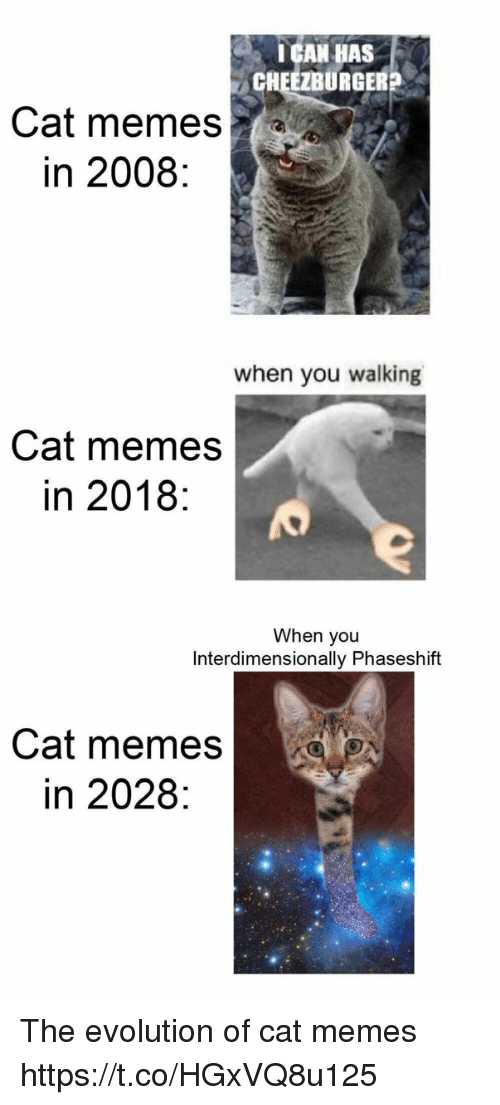 cheezburger: IGAN HAS  CHEEZBURGER?  Cat memes  in 2008:  when you walking  Cat memes  in 2018:  When you  Interdimensionally Phaseshift  Cat memes  in 2028: The evolution of cat memes https://t.co/HGxVQ8u125