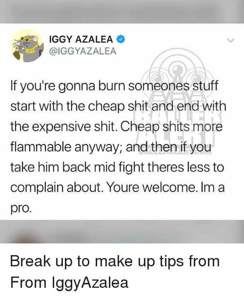 Iggy: IGGY AZALEA  @IGGYAZALEA  If you're gonna burn someones stuff  start with the cheap shit and end wit  the expensive shit. Cheap shits more  flammable anyway, and then if you  take him back mid fight theres less to  complain about. Youre welcome. Im a  pro. Break up to make up tips from From IggyAzalea