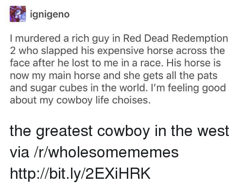 Red Dead Redemption: ignigeno  I murdered a rich guy in Red Dead Redemption  2 who slapped his expensive horse across the  face after he lost to me in a race. His horse is  now my main horse and she gets all the pats  and sugar cubes in the world. I'm feeling good  about my cowboy life choises. the greatest cowboy in the west via /r/wholesomememes http://bit.ly/2EXiHRK