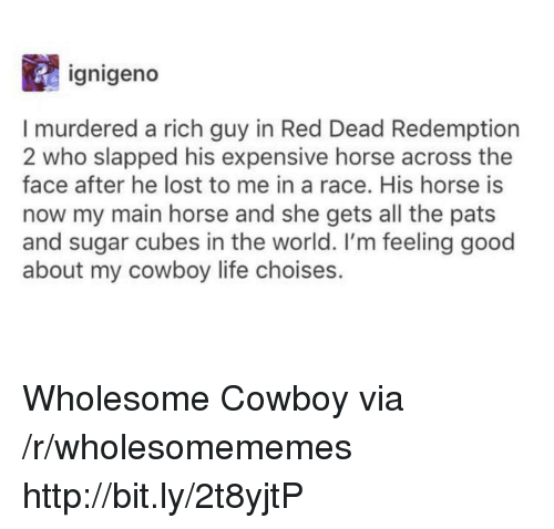 Red Dead Redemption: ignigeno  I murdered a rich guy in Red Dead Redemption  2 who slapped his expensive horse across the  face after he lost to me in a race. His horse is  now my main horse and she gets all the pats  and sugar cubes in the world. I'm feeling good  about my cowboy life choises. Wholesome Cowboy via /r/wholesomememes http://bit.ly/2t8yjtP