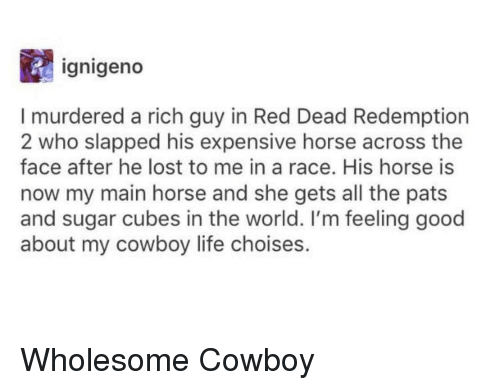 Red Dead Redemption: ignigeno  I murdered a rich guy in Red Dead Redemption  2 who slapped his expensive horse across the  face after he lost to me in a race. His horse is  now my main horse and she gets all the pats  and sugar cubes in the world. I'm feeling good  about my cowboy life choises. Wholesome Cowboy