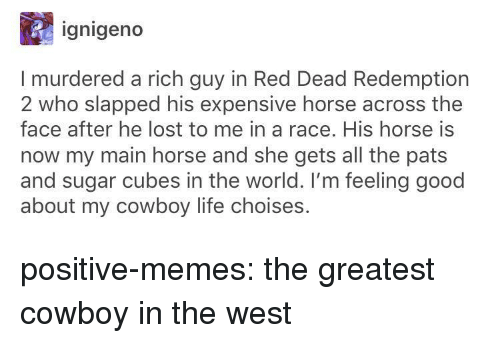 Red Dead Redemption: ignigeno  I murdered a rich guy in Red Dead Redemption  2 who slapped his expensive horse across the  face after he lost to me in a race. His horse is  now my main horse and she gets all the pats  and sugar cubes in the world. I'm feeling good  about my cowboy life choises. positive-memes:  the greatest cowboy in the west