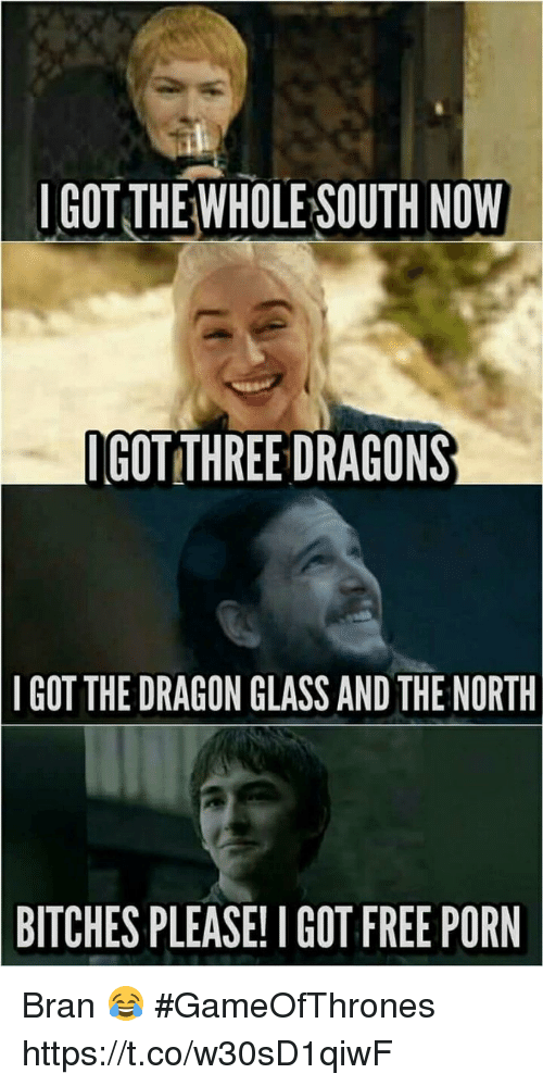 Memes, Free, and Free Porn: IGOT THE WHOLE SOUTH NOW  GOT THREE DRAGONS  IGOT THE DRAGON GLASSAND THE NORTH  BITCHES PLEASE! I GOT FREE PORN Bran 😂 #GameOfThrones https://t.co/w30sD1qiwF