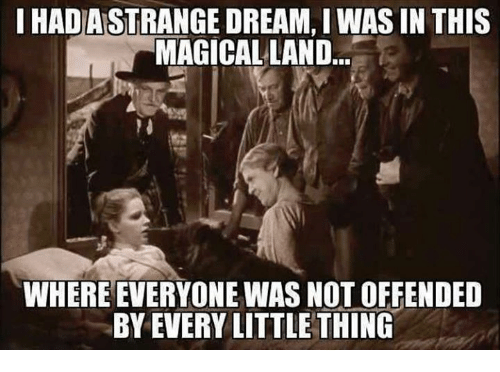 Dank, Magic, and Dreams: IHADASTRANGE DREAM, I WASIN THIS  MAGICAL LAND  WHERE EVERYONE WAS NOT OFFENDED  BY EVERY LITTLE THING