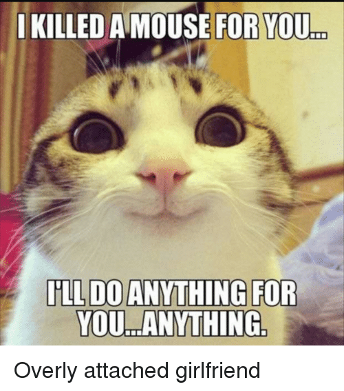 Overly Attached: IKILLED A MOUSE FOR YOU  ..  YOU. ANYTHING Overly attached girlfriend