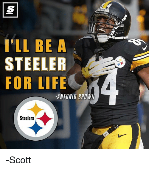 steeler: I'LL BE A  STEELER  FOR LIFE  ANTONIO BRO  Steelers -Scott