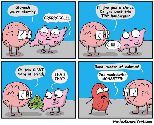 Theawkwardyeti: I'll give you a choice.  Stomach  you're starving!  Do you want this  TINY hamburger?  Same number of calories!  Or this GIANT  plate of salad?THAT!  You manipulative  MONSSTER  THAT!  theAwkwardYeti.com