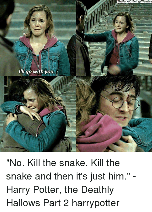 "Snake: I'll go with you.  ThePerksOf BeingaWeasley ""No. Kill the snake. Kill the snake and then it's just him."" -Harry Potter, the Deathly Hallows Part 2 harrypotter"