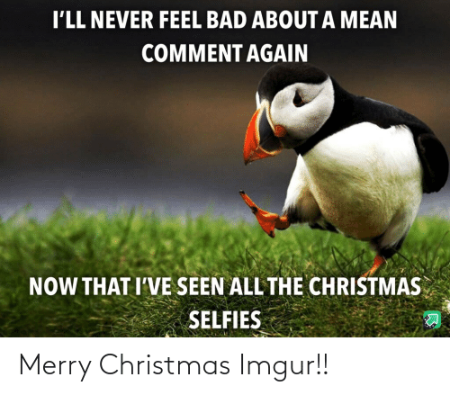 selfies: I'LL NEVER FEEL BAD ABOUT A MEAN  COMMENT AGAIN  NOW THAT I'VE SEEN ALL THE CHRISTMAS  SELFIES Merry Christmas Imgur!!