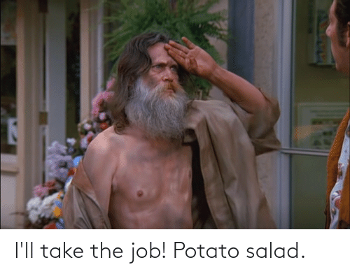 potato salad: I'll take the job! Potato salad.