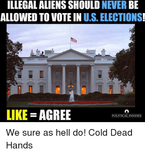 Cold: ILLEGAL ALIENS SHOULD  NEVER  BE  ALLOWED TO VOTE IN U.S. ELECTIONS  LIKE AGREE  POLITICAL INSIDER We sure as hell do! Cold Dead Hands