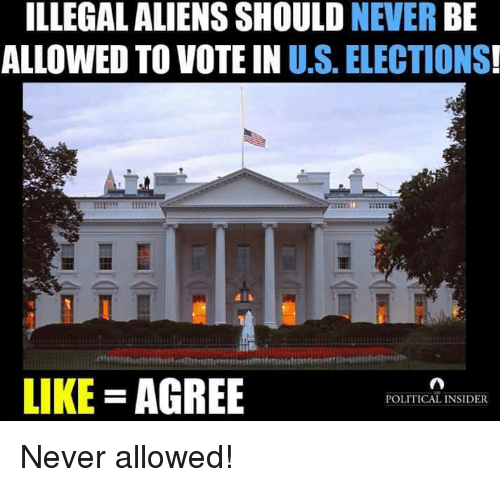 Illegalize: ILLEGAL ALIENS SHOULD  NEVER  BE  ALLOWED TO VOTE IN U.S. ELECTIONS  LIKE AGREE  POLITICAL INSIDER Never allowed!