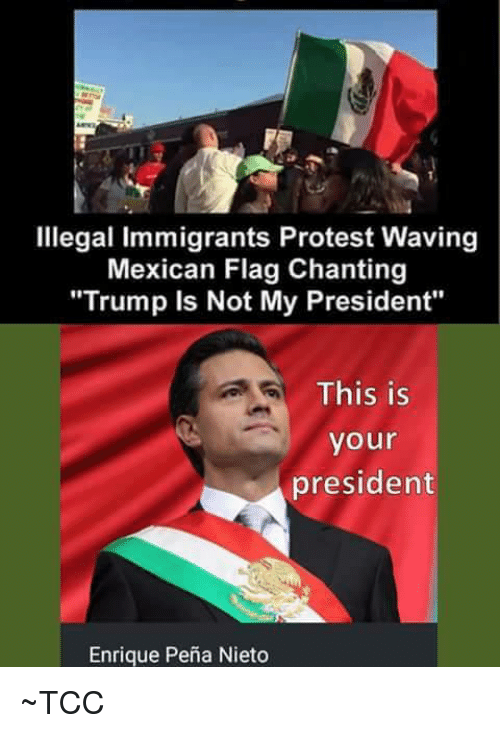 illegal immigrants protest waving mexican flag chanting trump is not 7100047 illegal immigrants protest waving mexican flag chanting trump is