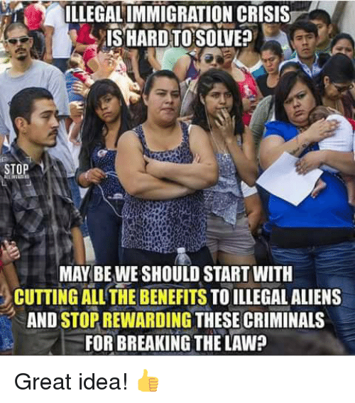 Memes, Aliens, and All The: ILLEGALIMMIGRATION CRISIS  MAY BE WE SHOULD START WITH  CUTTING ALL THE BENEFITS TO ILLEGAL ALIENS  AND STOP REWARDING THESE CRIMINALS  FOR BREAKING THE LAW? Great idea! 👍