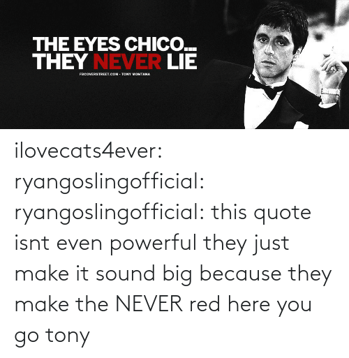 Here You Go: ilovecats4ever: ryangoslingofficial:  ryangoslingofficial: this quote isnt even powerful they just make it sound big because they make the NEVER red  here you go tony