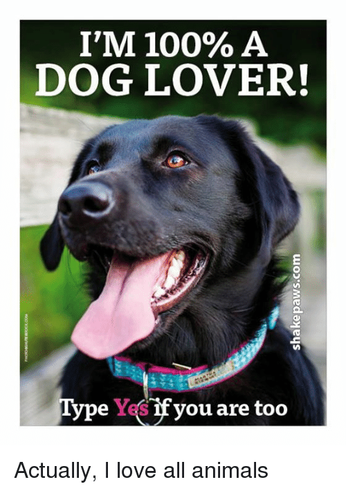 dog lovers: I'M 100% A  DOG LOVER!  ype Y if you are too Actually, I love all animals