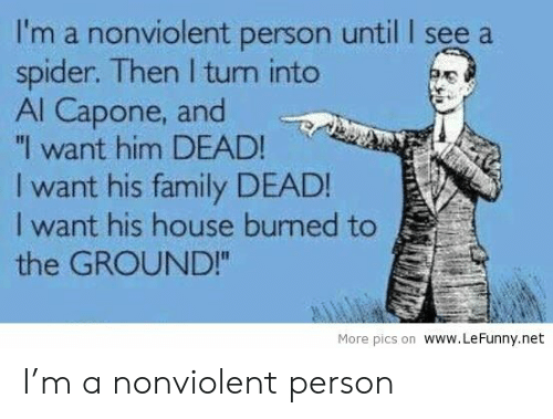 """Al Capone: I'm a nonviolent person until I see a  spider. Then I turn into  Al Capone, and  """"I want him DEAD!  I want his family DEAD!  I want his house burned to  the GROUND!  More pics on WWW.LeFunny.net I'm a nonviolent person"""