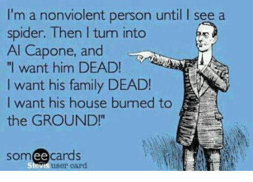 """capon: I'm a nonviolent person until I see a  spider. Then l tum into  Al Capone, and  """"I want him DEAD!  I want his family DEAD!  I want his house burned to  the GROUND!""""  somee cards  Stevis user card"""