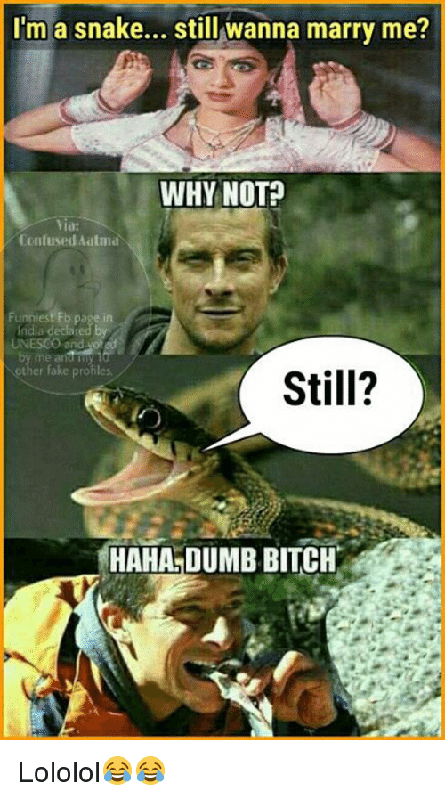dumb bitches: I'm a snake... still wanna marry me?  WHY NOT  Confused Ailtma  UNESCO and ot  other fake profiles.  Still?  HAHA DUMB BITCH Lololol😂😂