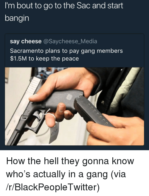 Blackpeopletwitter, Gang, and Sacramento: I'm bout to go to the Sac and start  bangin  say cheese @Saycheese_Media  Sacramento plans to pay gang members  $1.5M to keep the peace <p>How the hell they gonna know who's actually in a gang (via /r/BlackPeopleTwitter)</p>