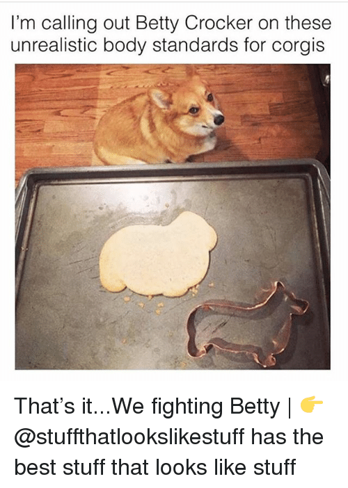 Memes, Best, and Stuff: I'm calling out Betty Crocker on these  unrealistic body standards for corgis That's it...We fighting Betty | 👉 @stuffthatlookslikestuff has the best stuff that looks like stuff