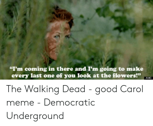 "Carol Meme: ""I'm coming in there and I'm going to make  every last one of you look at the flowers!"" AVO  099 The Walking Dead - good Carol meme - Democratic Underground"