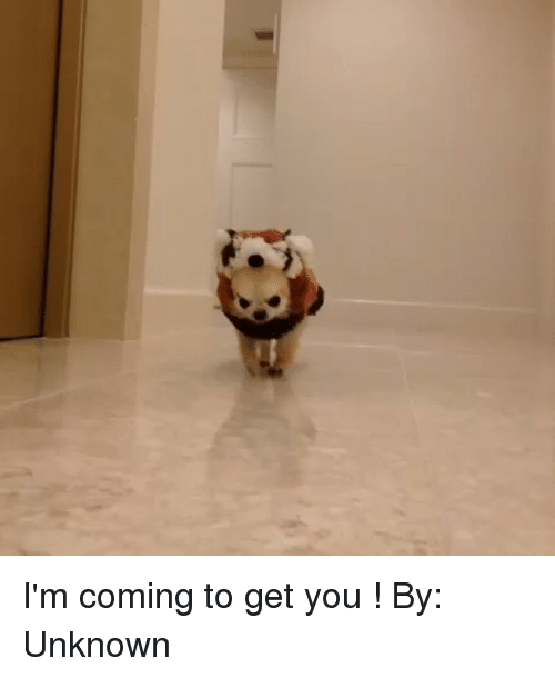 Memes, 🤖, and Unknown: I'm coming to get you ! By: Unknown