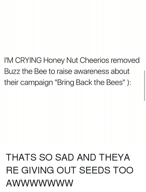 """Honey Nut: IM CRYING Honey Nut Cheerios removed  Buzz the Bee to raise awareness about  their campaign """"Bring Back the Bees"""" THATS SO SAD AND THEYA RE GIVING OUT SEEDS TOO AWWWWWWW"""