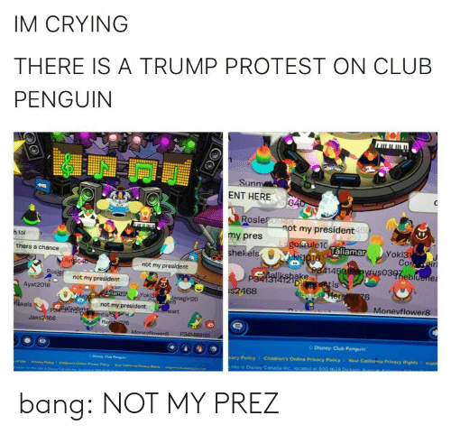 bang: IM CRYING  THERE IS A TRUMP PROTEST ON CLUB  PENGUIN  Sunn  ENT HERE  Rosie  my pres  hekéls  t my president  15  h lol  laliamar  Yoki3  thers a chance  not my president  14  03heb  ake  Di  not my president  is  Ayat 2018  468  6  oki3  Monevflower8  kels  not my president  Jass2468  Disney Club Penguin  acy Policy  Children's Online Privacy Policy 1 Your California Privacy Rights I supp  site is Disney Caneda bang:  NOT MY PREZ