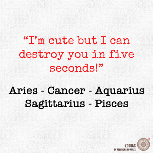 "Cute, Aquarius, and Aries: ""I'm cute but I can  destroy you in five  seconds!""  Aries Cancer Aquarius  Sagittarius - Pisces  ZODIAC  BY RELATIONSHIP RULES"