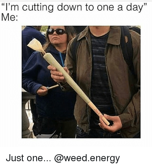 "Energy, Weed, and Marijuana: ""I'm cutting down to one a day""  Me:  13 Just one... @weed.energy"