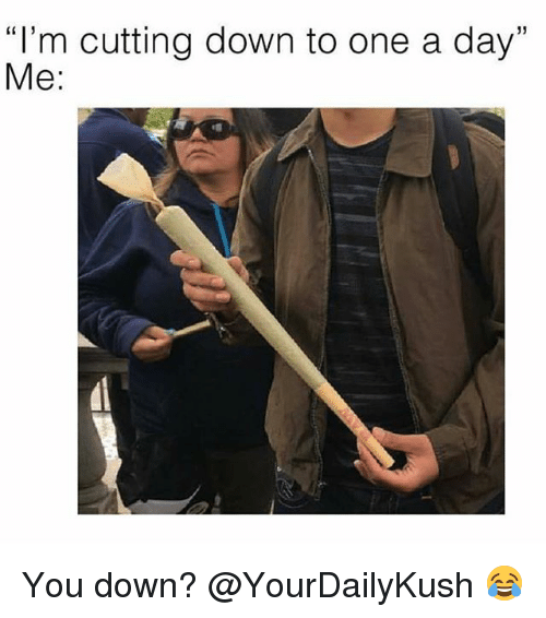 "Memes, 🤖, and One: ""I'm cutting down to one a day""  Me: You down? @YourDailyKush 😂"