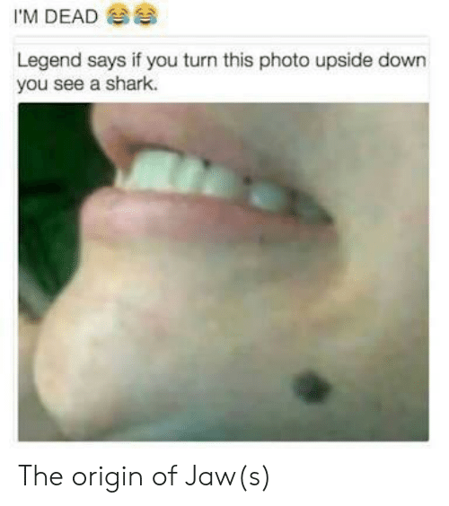 The Origin Of: I'M DEAD  Legend says if you turn this photo upside down  you see a shark. The origin of Jaw(s)